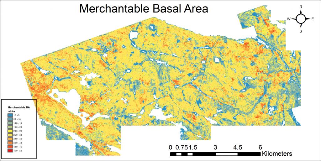 PRF_MerchBA surface
