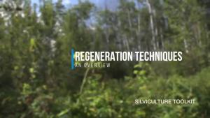 Regeneration Techniques - An Overview