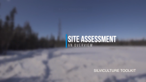 Site Assessment - An Overview