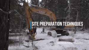 Site Preparation Techniques - Mixing and Scalping