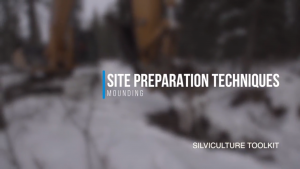 Site Preparation Techniques - Mounding