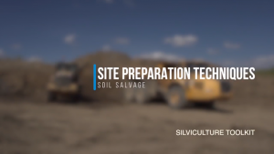 Site Preparation Techniques - Soil Salvage