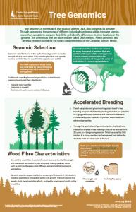 Tree Genomics