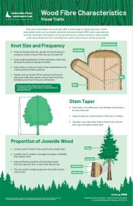 Wood fibre characteristics