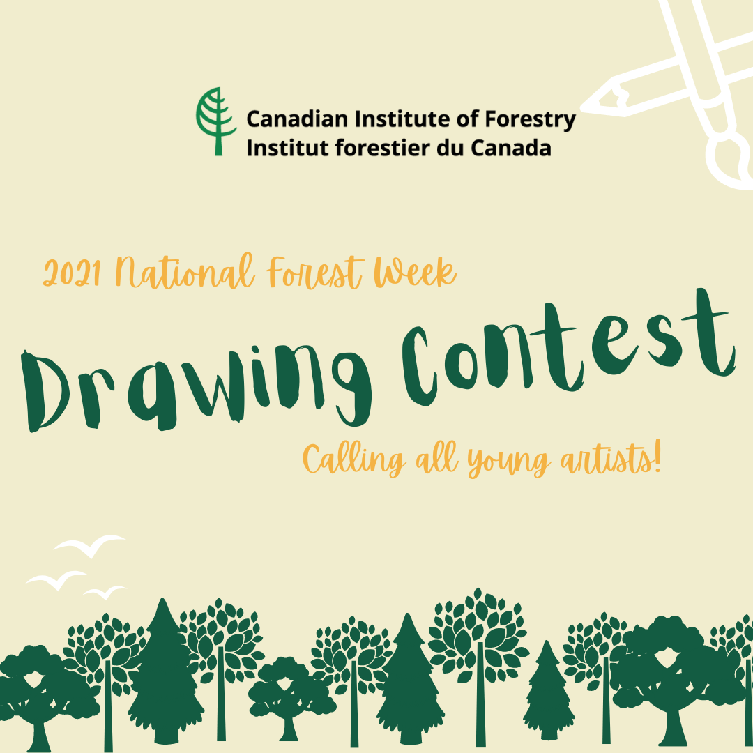 Copy of 2021 National Forest Week Youth Drawing Contest