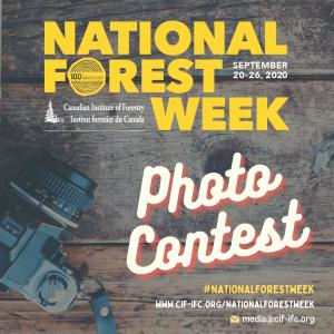 NFW 2020 Photo contest - socials
