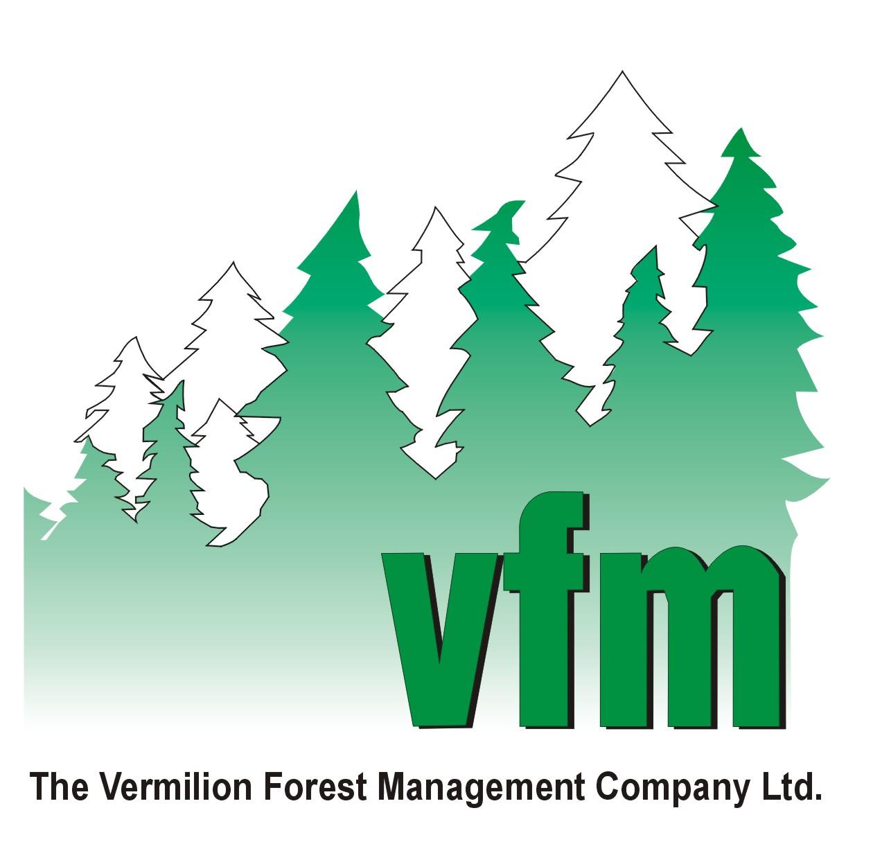 vfm_logo