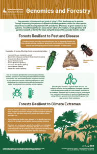 Genomics and Forestry