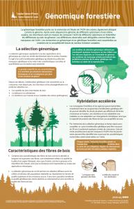 tree geonomics_fr