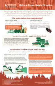 midterm timber supply